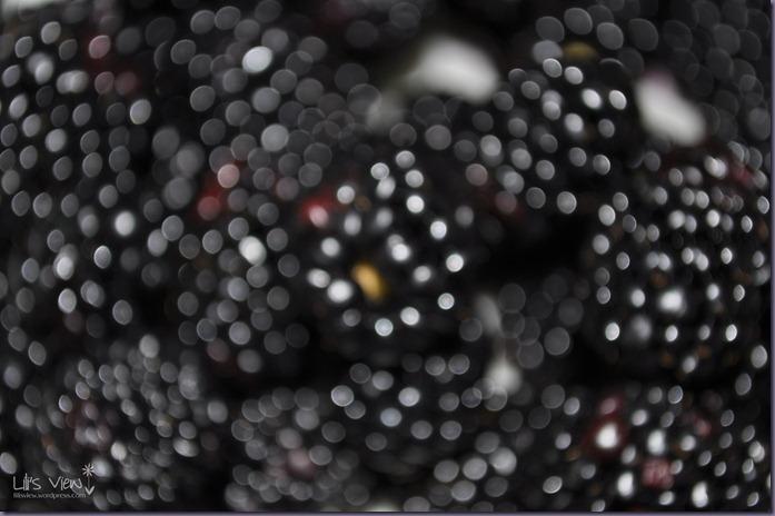blurry blackberries