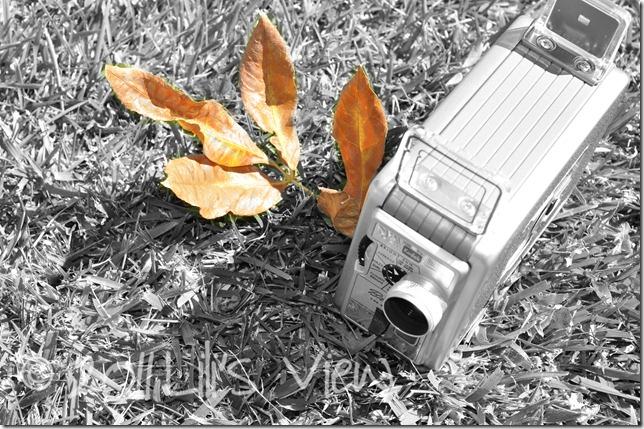 bw camera wm