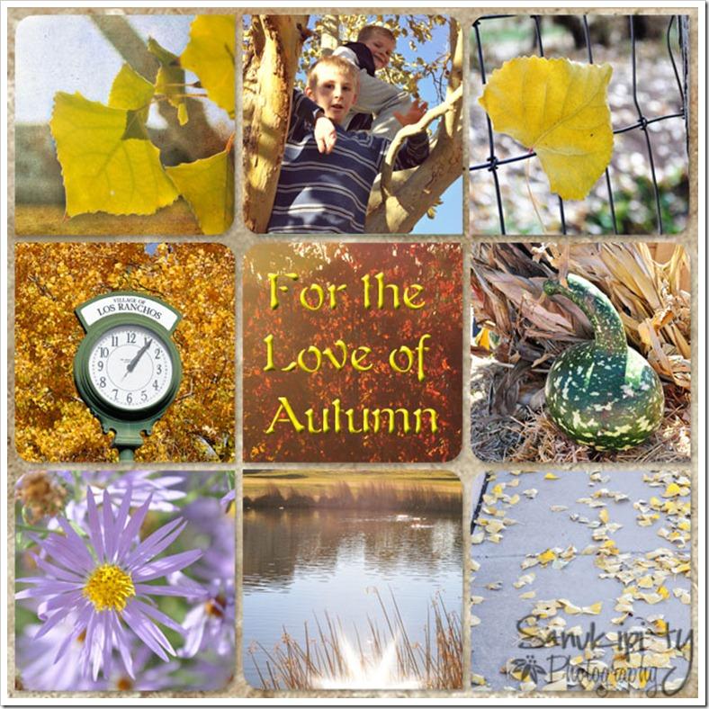 autumn2011