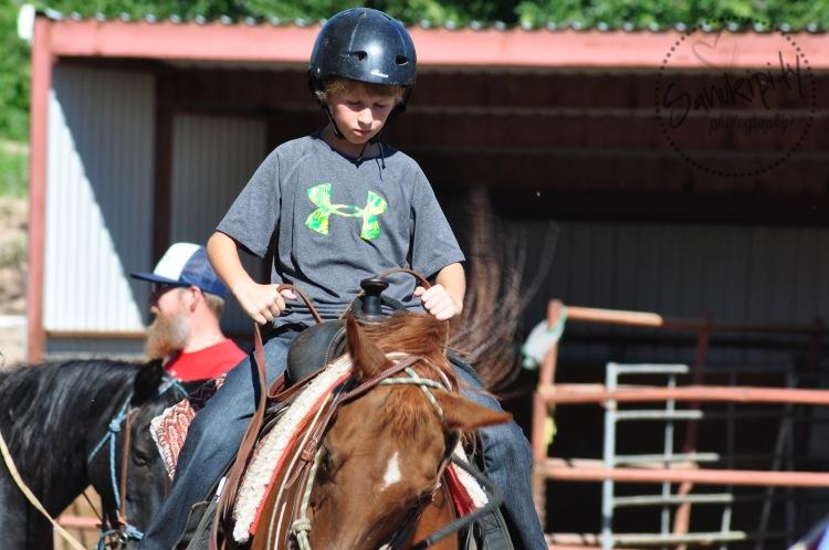 b on horse wm
