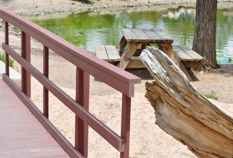 dead log bridge