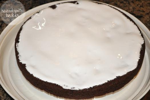 brownie cake2