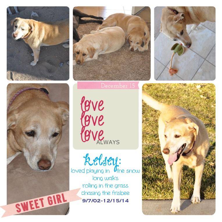 kelsey, collage, digital scrapbooking