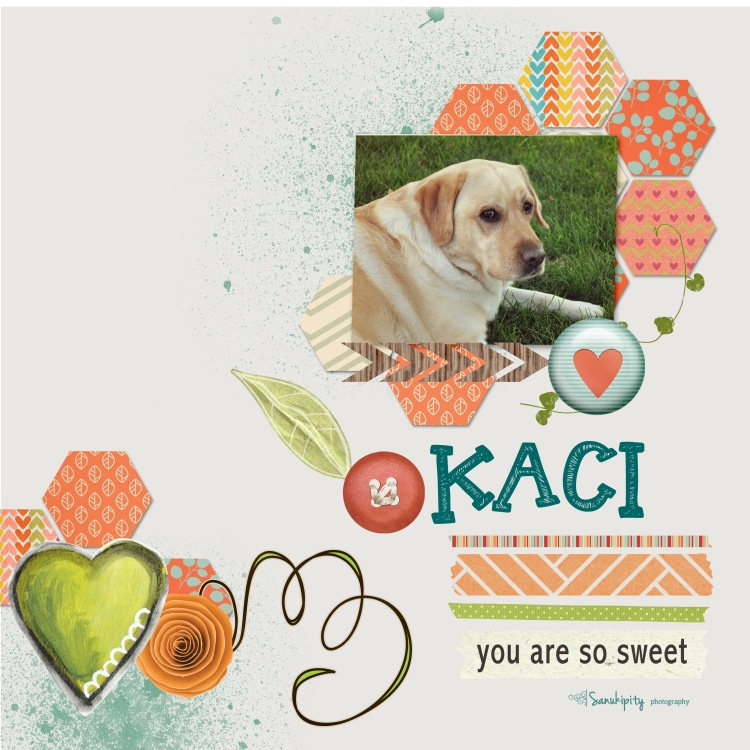 dogs, digital scrapbooking, Kaci, pets