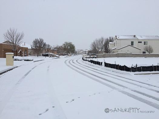 2015 snow_edited-1