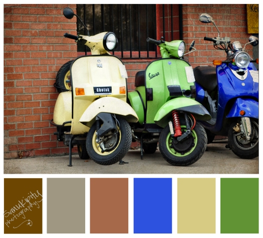scooter-color-bar